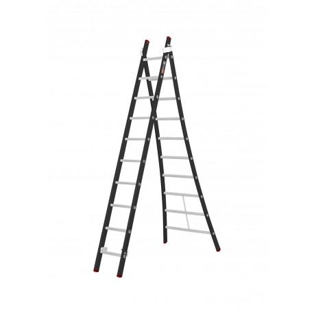Gedimax ladder (2-delig) 10 sporten
