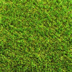 Namgrass Green Chantelle 30mm breedte 2m - lengte per 10cm